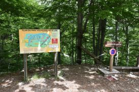7_Tag_Trail2a