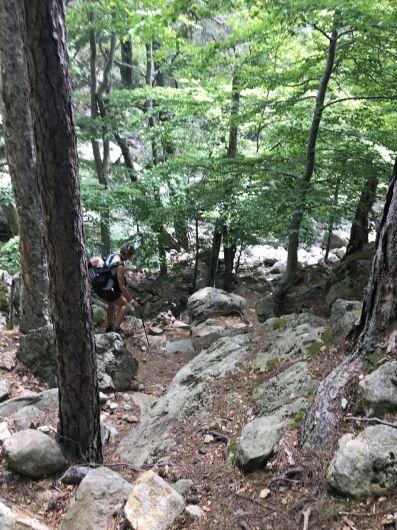 7_Tag_Trail23